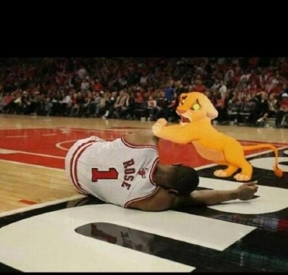 Simba Derrick Rose e1355328556535 Best Sports Memes of 2012