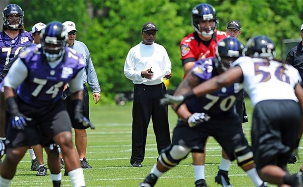 Baltimore Ravens OTAs