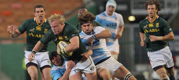 Springboks vs Argentina 2013