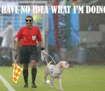 World Cup Linesman