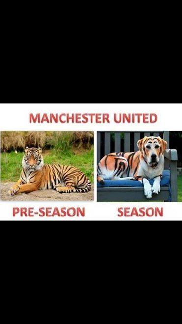 Preseason and Season