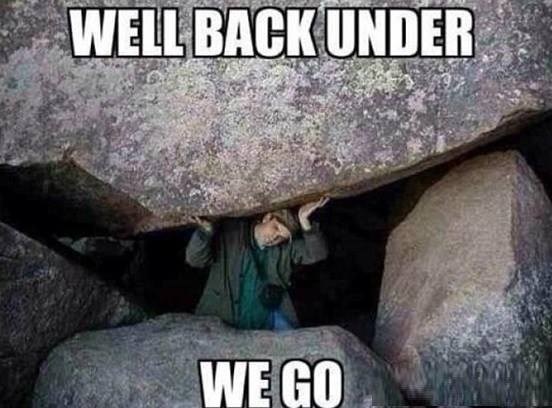 Back under the rock