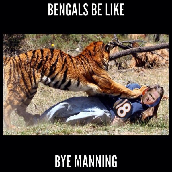 Bengals & Manning