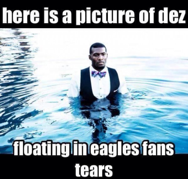 Eagles tears