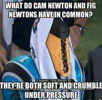 Fig newton