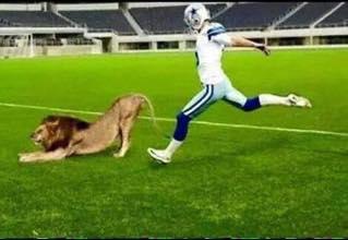 Kicking a Lion