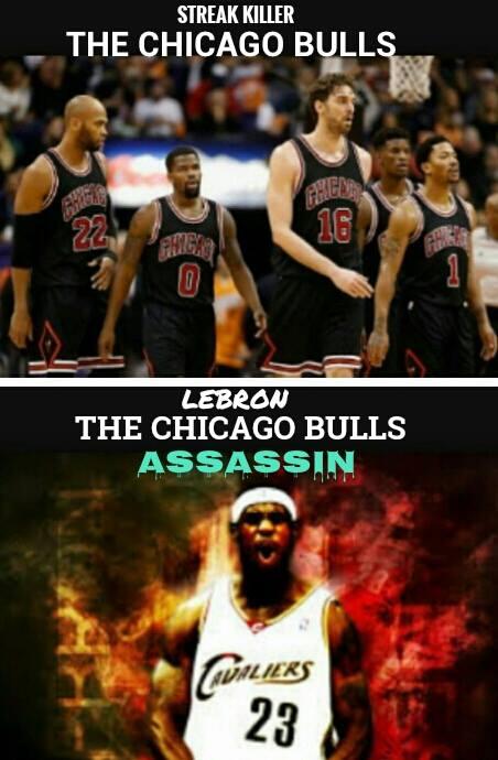 Bulls assasin