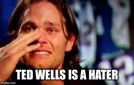 Ted Wells is a hater