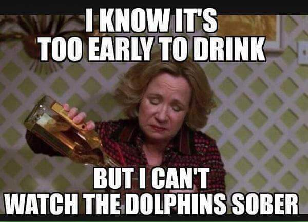 Dolphins watching drunk