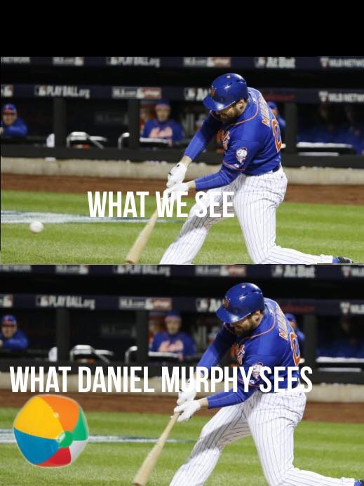 What Murphy Sees 2