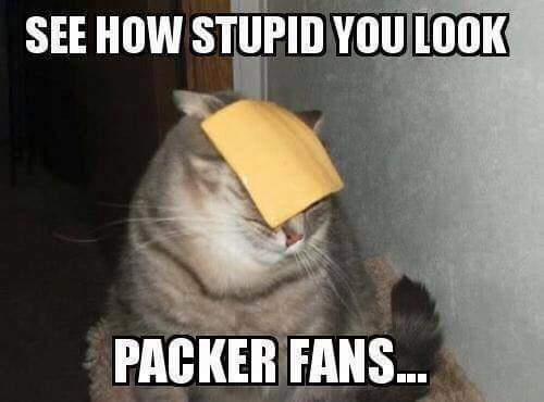 Cheese head stupid