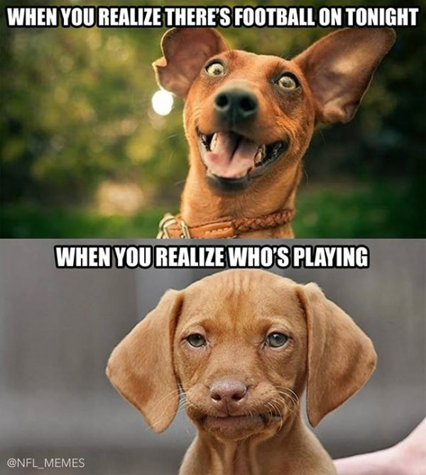 Disappointed dog meme - Sportige