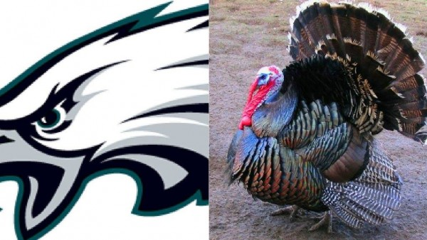 Eagles Turkey