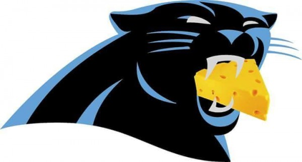 Panther eating chesse