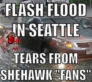 Seattle floods
