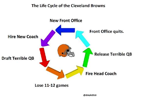 Browns life cycle