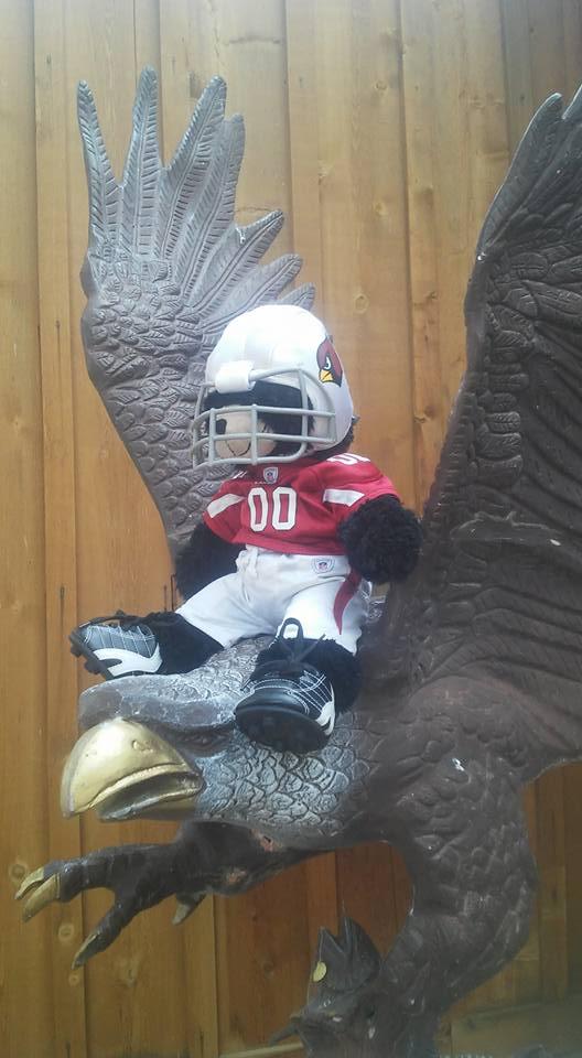Cardinals Over Eagles