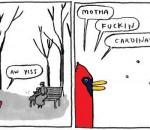 MF Cardinals