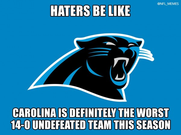 Panthers haters