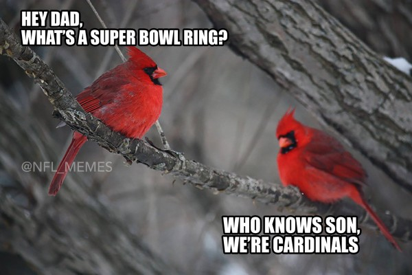 Cardinals don't know