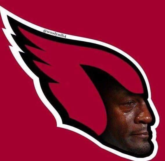 Sad Jordan Cardinals