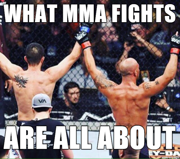 What MMA Fights Are All About