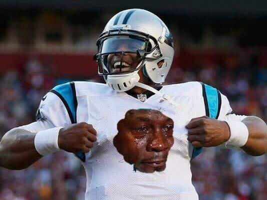 Sad Jordan Panthers Logo