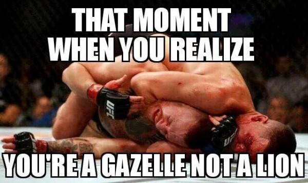 A Gazelle, not a Lion