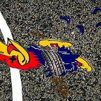 Roadkill Jayhawk