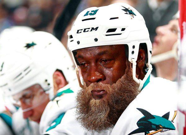 Crying Jordan Sharks