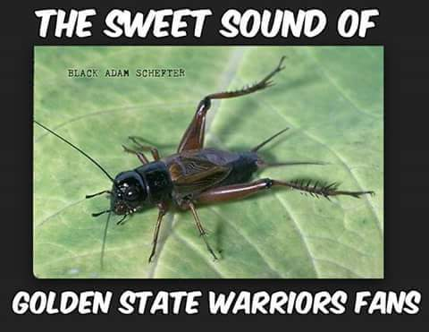 Sounds of Warriors fans