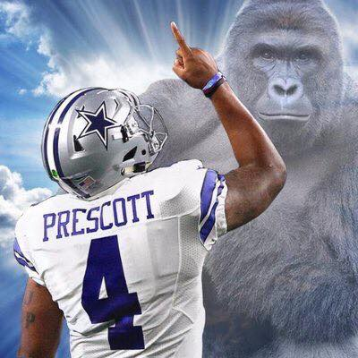 dak-for-harambe