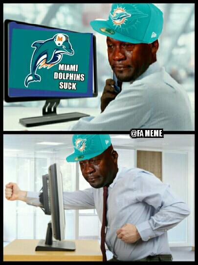Dolphins Suck Meme
