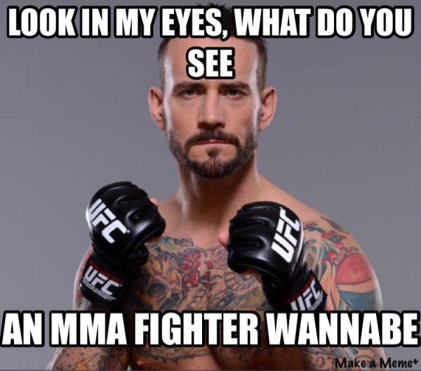 mma-fighter-wannabe