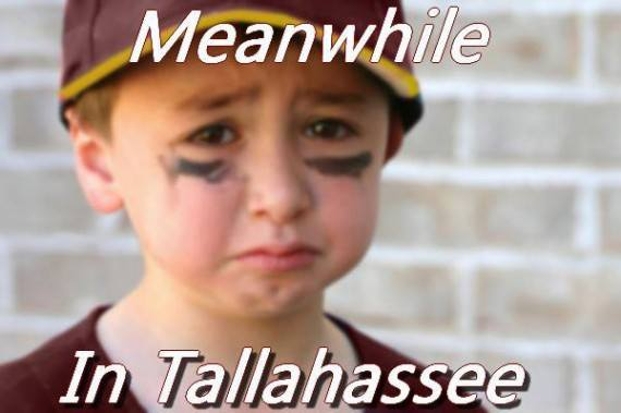 meanwhile-in-tallahassee