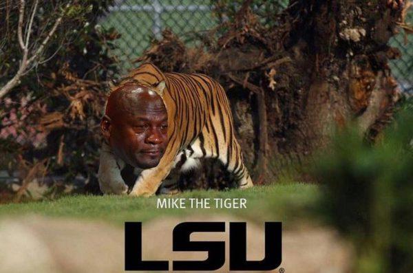 Notre Dame Fun LSU, Best 20 Memes Florida,  Making of