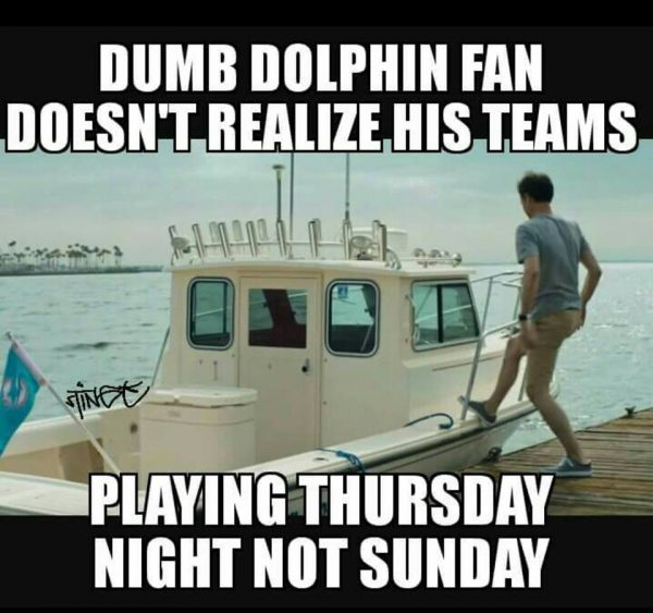 Stupid Dolphins