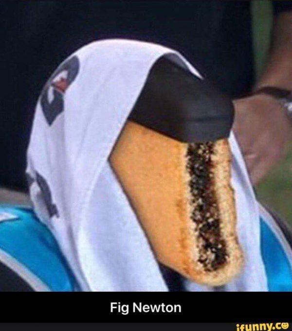 fig-newton