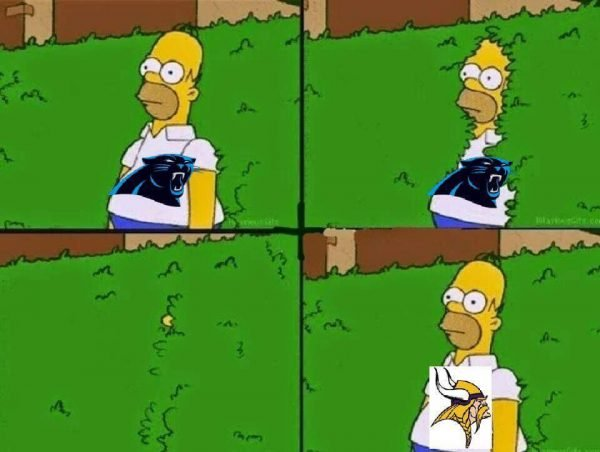 from-panthers-to-vikings-bandwagon