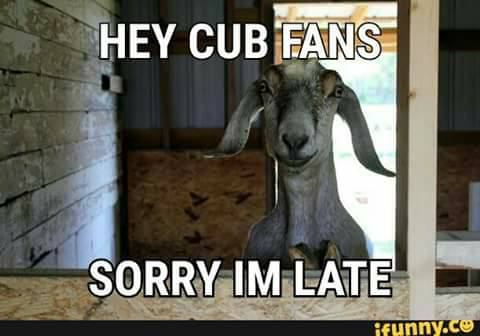 goat-was-late