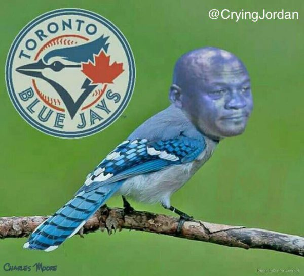 the-crying-jordan-blue-jay