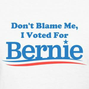 i-voted-for-bernie