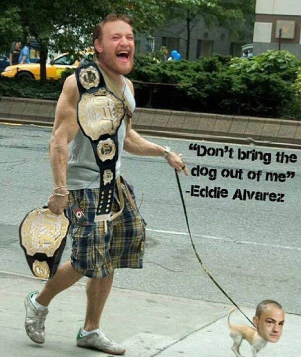 mcgregor-dog-walking