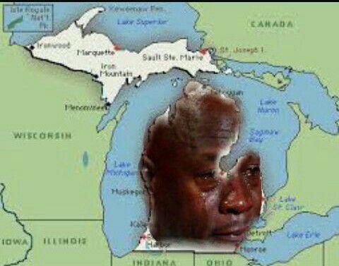 state-of-michigan-crying-jordan