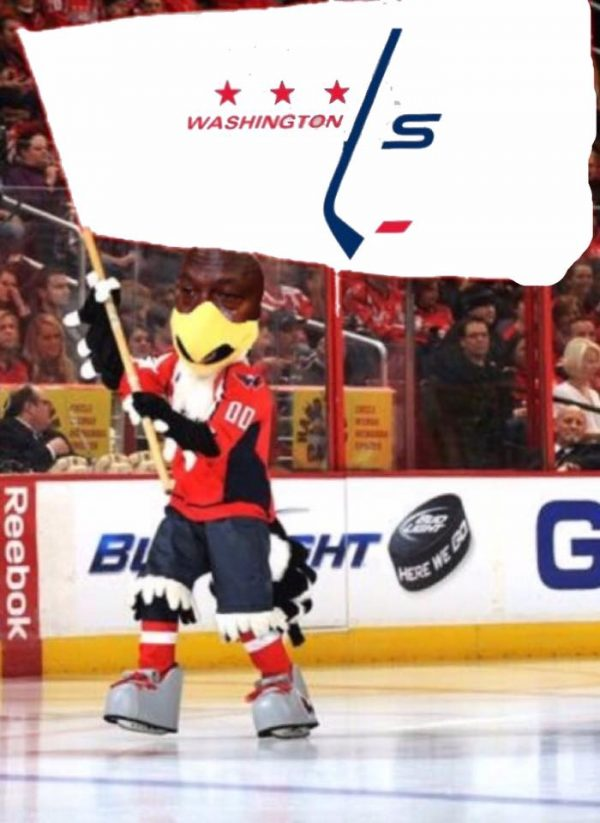Capitals Loser Flag