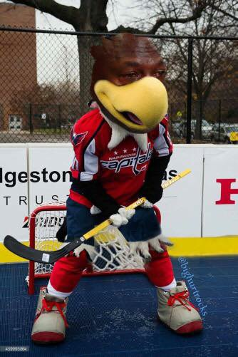 Capitals Mascot Crying Jordan