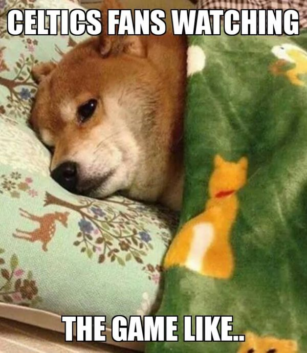 Celtics Fan watching the game