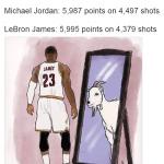 LeBron Goat Mirror