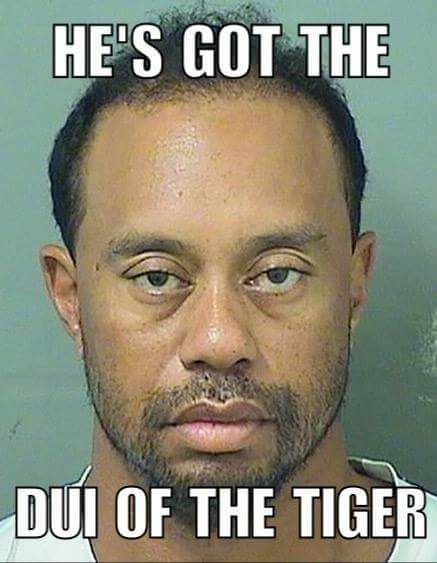 The DUI of the Tiger