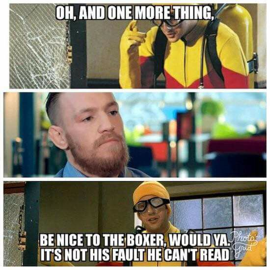 Be nice to the boxer
